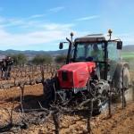 Foto recollida biomassa Nou Verd_NP